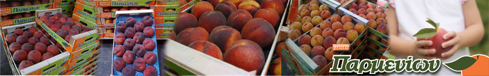 Company deals with the packaging and sale of fruit. We distribute quality products by supplying domestic wholesale companies and big chains SuperMarket with fresh fruit such as: peaches,cherries,apples,nectarines,pears,plums.